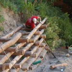Interventi di consolidamento con Ingegneria Naturalistica